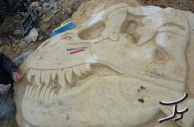 perdaia-dinosauro1