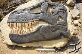 perdaia-dinosauro3