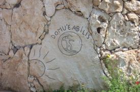 perdaia-pietra2
